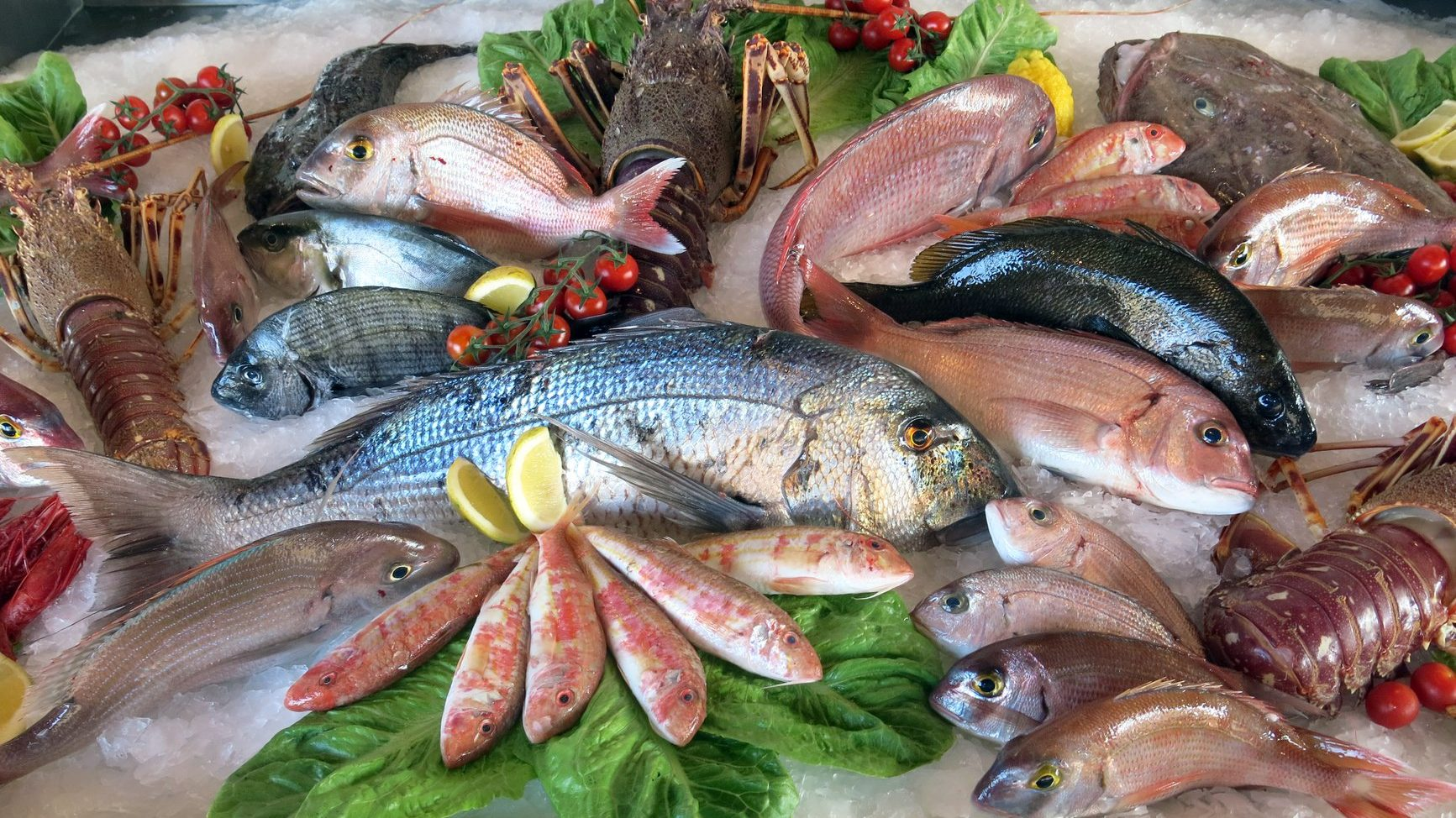 Ristorante di Pesce Fresco a Parma con il pescato Luna Blu